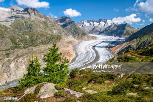 Great Aletsch Glacier, Valais, Switzerland, Europe