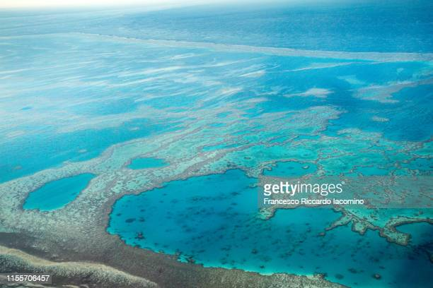 great barrier reef from above, queensland, australia. - francesco riccardo iacomino australia foto e immagini stock