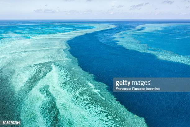 great barrier reef, queensland, australia - great barrier reef stock pictures, royalty-free photos & images