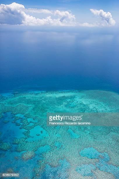 great barrier reef, queensland, australia - francesco riccardo iacomino australia foto e immagini stock