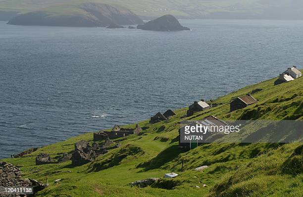 Great Blasket Island Ireland The path leading to the harbour is overgrown with weeds