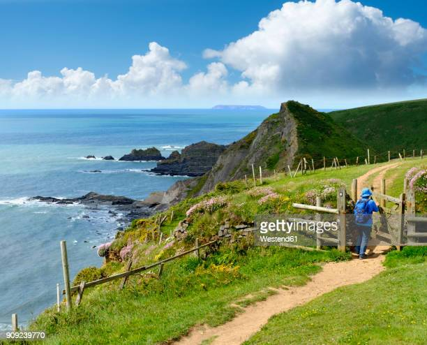 great britain, england, devon, hartland, hartland quay, female hiker opening gate, coastal path - devon stock pictures, royalty-free photos & images