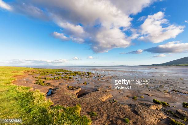 great britain, scotland, caerlaverock national nature reserve, channel of lochar water - galloway scotland stock pictures, royalty-free photos & images