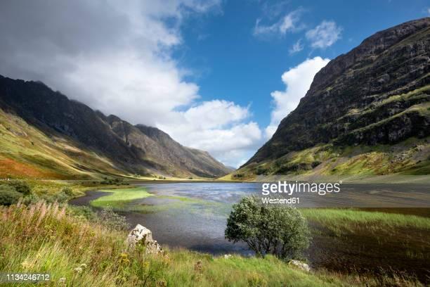 great britain, scotland, scottish highlands, glen coe, loch achtriochtan - glencoe scotland stock pictures, royalty-free photos & images