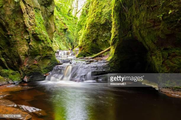 great britain, scotland, trossachs national park, finnich glen canyon, the devil's pulpit, river carnock burn - 峡谷 ストックフォトと画像