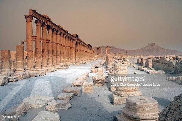 Great Colonnade Palmyra Syria