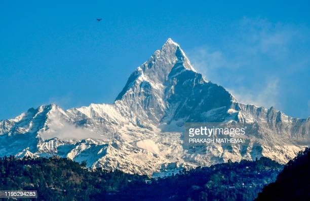 Great cormorant flies above the Mount Machhapuchhre and Annapurna mountain range, in Pokhara, some 200 kms west of Kathmandu on January on 22, 2020.