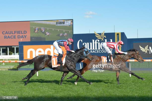 Great Duchess ridden by Jye McNeil wins the Neds Same Race Multi Hcp at Caulfield Racecourse on May 30 2020 in Caulfield Australia