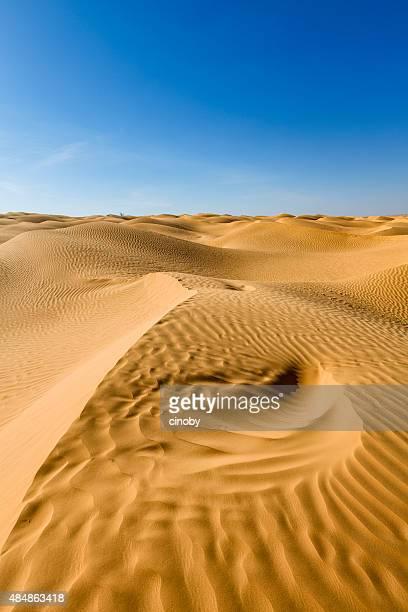 great eastern arena mar en el desierto del sahara de túnez - great sandy desert fotografías e imágenes de stock