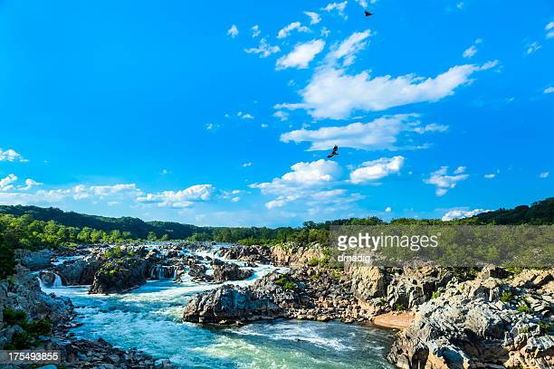 great falls of the potomac - potomac maryland stock pictures, royalty-free photos & images