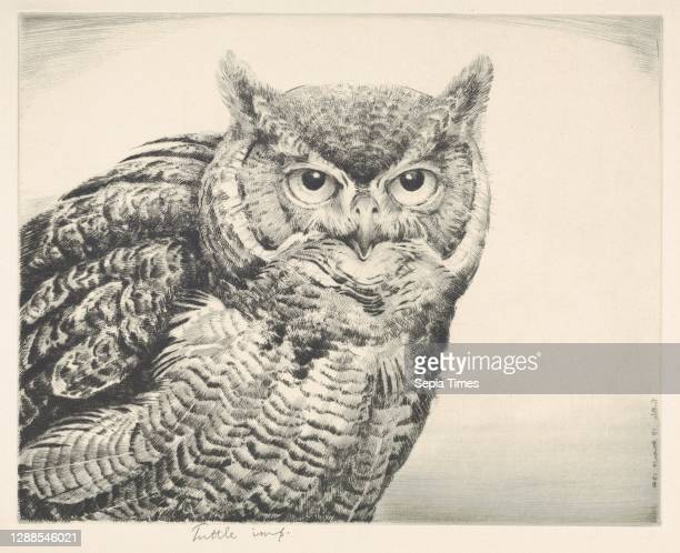 Great Horned Owl Drypoint, plate: 8 3/4 x 11 in. , Prints, Henry Emerson Tuttle .