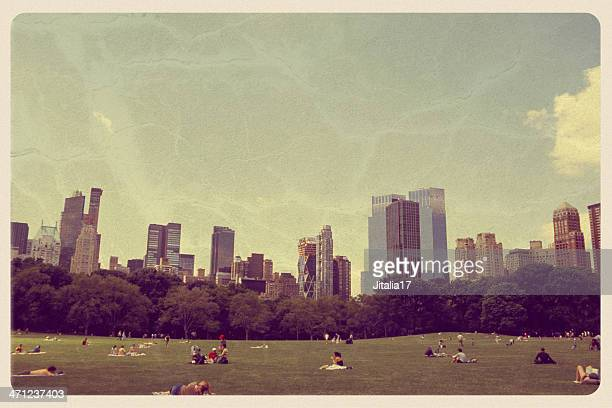 great lawn in central park - vintage postcard - postcard stock pictures, royalty-free photos & images
