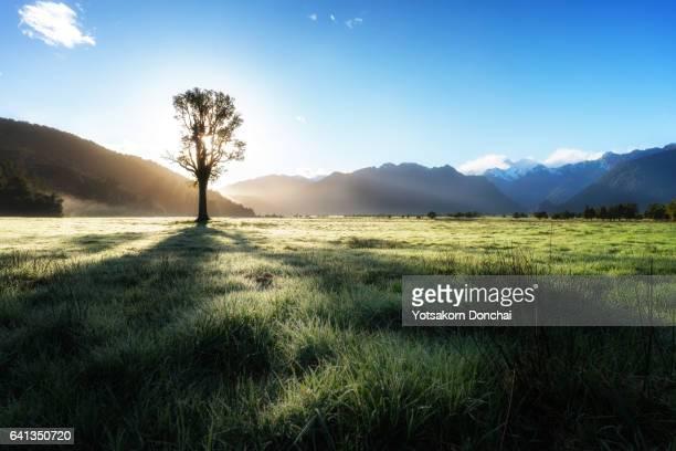 Great Morning at Lake Matheson, New Zealand