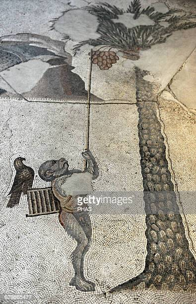 Great Palace Mosaic Museum 4th6th centuries Detail of a mosaic depicting a monkey as bird catcher Istanbul Turkey
