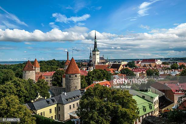 great panoramic view of tallinn from toompea - エストニア ストックフォトと画像
