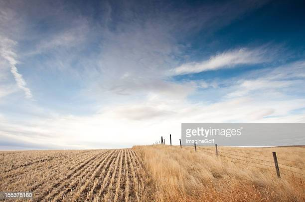 Great Plains in Alberta Canada