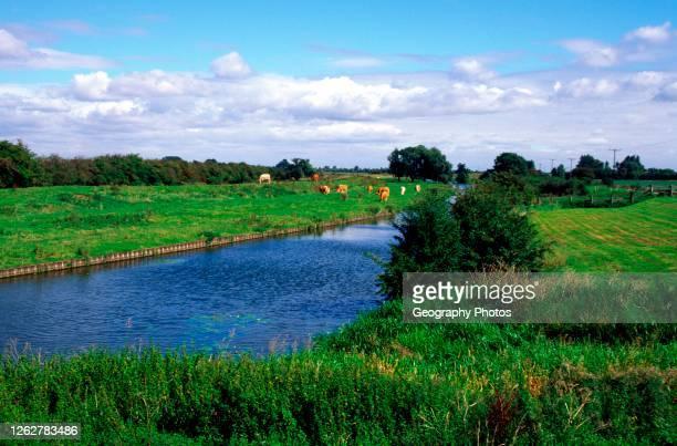 Great river Ouse, Stretham Cambridgeshire England, UK.