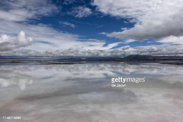 great salt lake, salt lake city, qinghai,china - great salt lake stock pictures, royalty-free photos & images