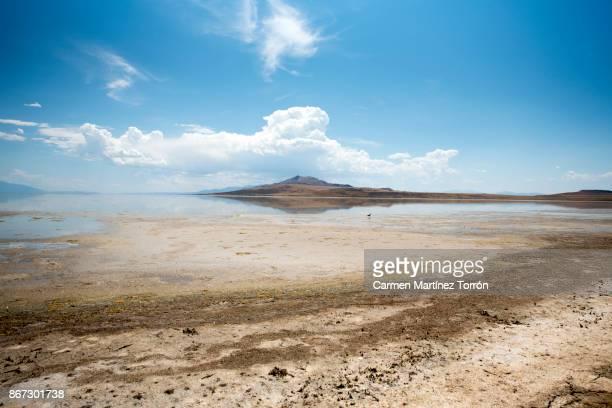 great salt lake, salt lake city, utah, america, usa - salt lake city utah stock pictures, royalty-free photos & images