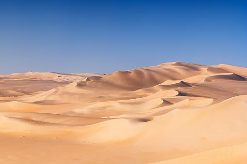 Great Sand Sea, Sahara Desert, Africa 503779778
