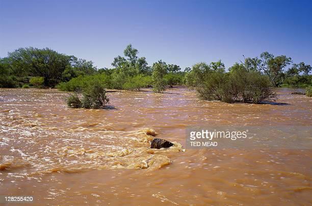 great sandy desert in flood after heavy rains,western australia, australia - great sandy desert fotografías e imágenes de stock