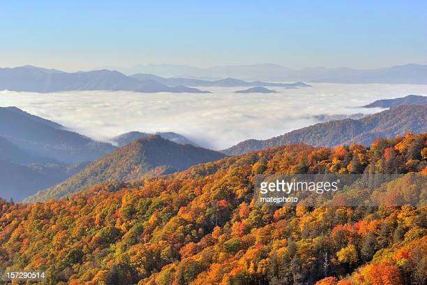grande smokey montanhas vista - parque nacional das great smoky mountains - fotografias e filmes do acervo