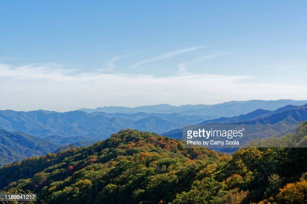 great smoky mountains in north carolina - blue ridge parkway stock pictures, royalty-free photos & images