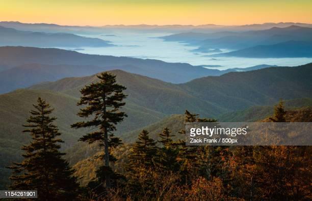 great smoky mountains national park - clingman's dome fotografías e imágenes de stock