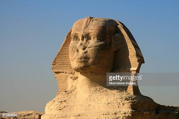 great sphinx of giza in cairo, egypt - archaeology stock pictures, royalty-free photos & images