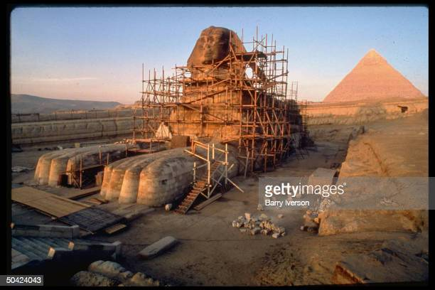 Great Sphinx surrounded by latticework of scaffolding during restoration w pyramid of Giza in bkgrd