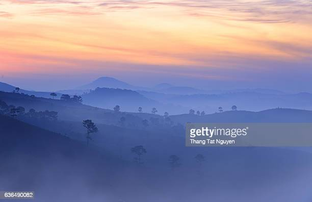 Great view of  foggy forest and mountain with pine tree from Langbiang mountain, Dalat, Vietnam