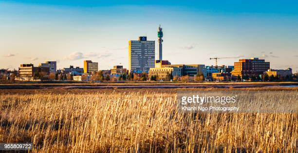 greater moncton, new brunswick, canada - moncton stock photos and pictures