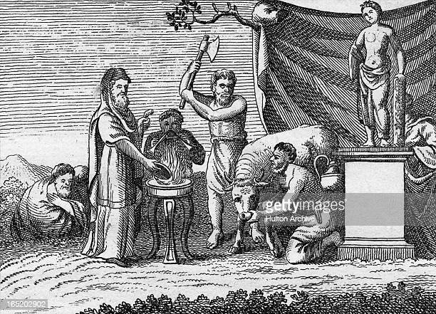 A GrecoRoman religious sacrifice of a bull circa 200 AD