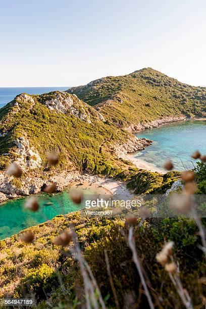 greece, corfu, cape arilla near afionas - corfu stock pictures, royalty-free photos & images