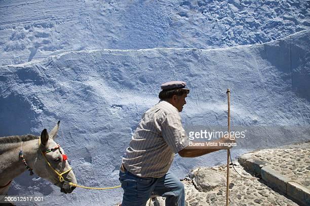 Greece, Cyclades, Santorini, Fira, man leading donkey up steps