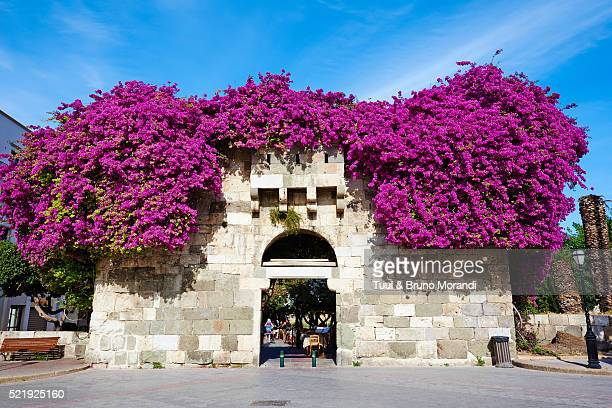 Greece, Dodecanese, Kos, Kos city, Liberty square