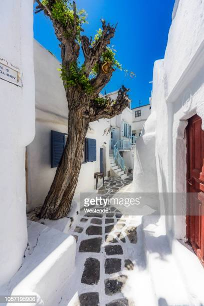 greece, mykonos, alley in the town - cyclades islands stock pictures, royalty-free photos & images