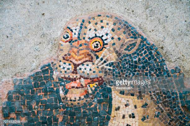 greece, mykonos, delos, mosaic of a lion - ancient greece photos stock pictures, royalty-free photos & images