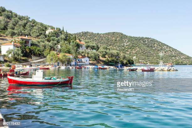 Greece, Pelion, Pagasetic Gulf, Kottes, fishing boat at harbour