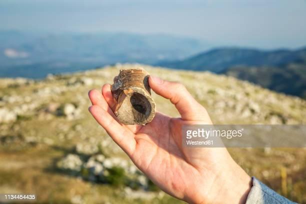greece, peloponnese, arcadia, lykaion, hand holding find of a vase at the antique excavation site at mountain profitis ilias - archäologie stock-fotos und bilder