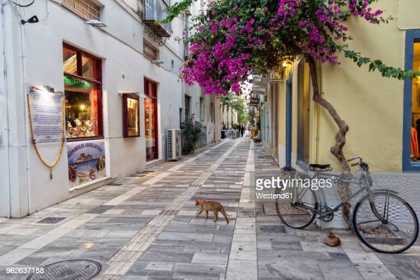 Greece, Peloponnese, Argolis, Nauplia, Old town, alley with flowering bougainvillea