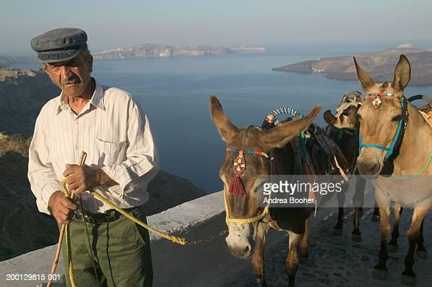 greece, santorini, fira, mature man walking with donkeys - griechenland stock-fotos und bilder