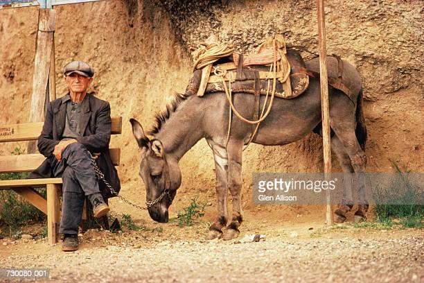 greece,meteora,man with donkey - esel stock-fotos und bilder