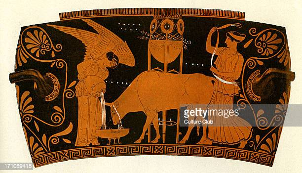 Greek red figure vase showing women caring for a sacrificial bull Athenian circa 5th century BCE