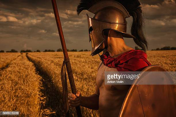 Greek warrior in wheat field