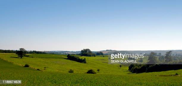 green agricultural fields - field stock pictures, royalty-free photos & images