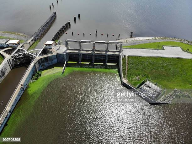 Green algae blooms are seen at the Port Mayaca Lock and Dam on Lake Okeechobee on July 10 2018 in Port Mayaca Florida Gov Rick Scott has declared a...