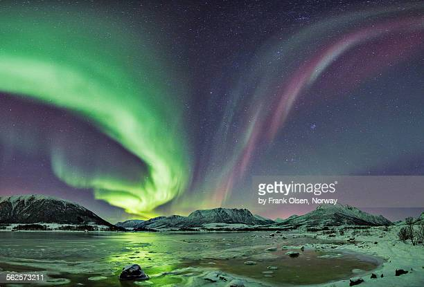 Green and purple Auroras