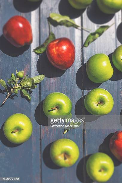 green and red apples - catherine macbride 個照片及圖片檔