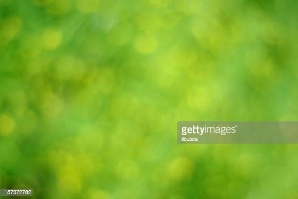 Grünen und gelben Hintergrund